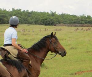 Game viewing on the Waterberg Charity Ride
