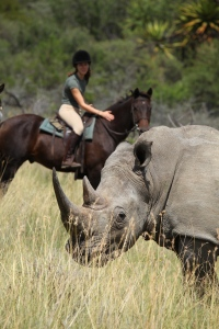 Riding safaris at Ant's (1)