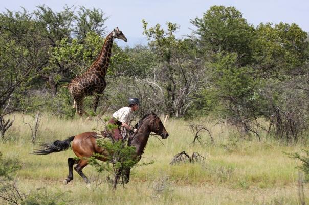 Riding safaris at Ant's (43)