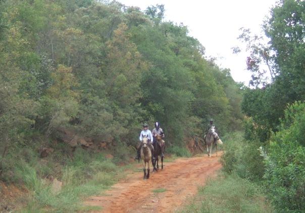 Road to Kwalata