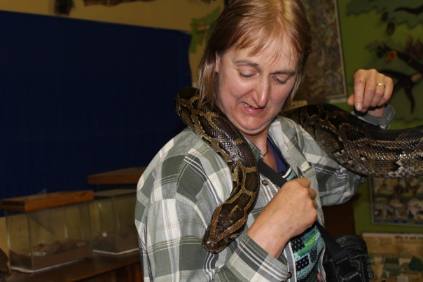 LWS Anne with python