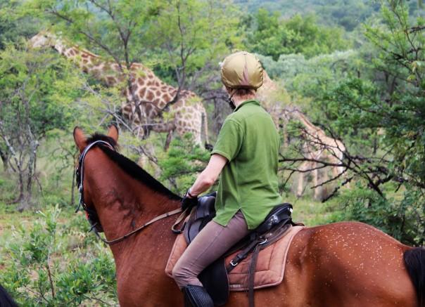 twt-ride-day-2-janie-and-girafffe