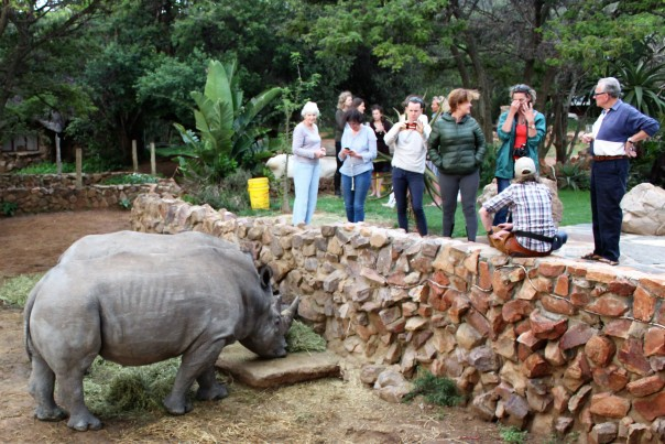 twt-ride-day-2-talking-about-rhino-horn-with-jess