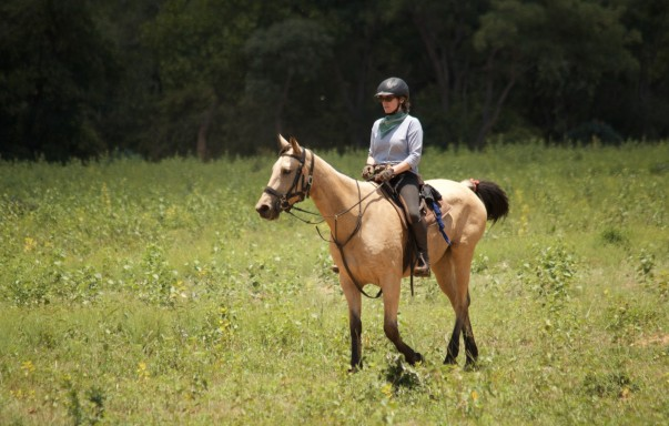 twt-rider-elisa-spearman-who-hunts-with-the-beaufort