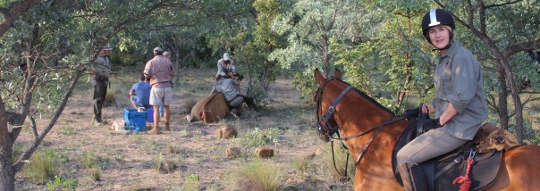 The game vet ministering to an injured eland on Ant's Nest