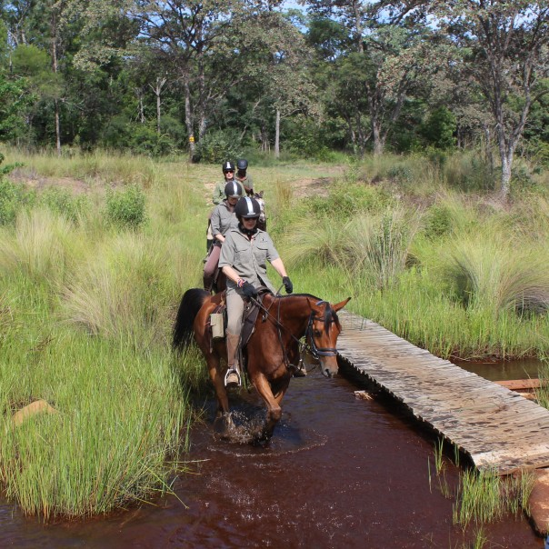 TWT Ride 2018 crossing a stream on Lindani - photo Sophie Neville.jpg